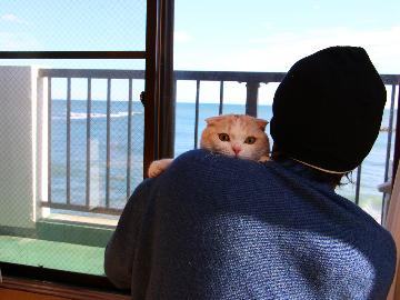 【お刺身ボリュームアップ】わんちゃん・猫ちゃんと一緒に同伴OK!平日なら日本酒1本付♪[1泊2食付]