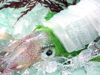 今が旬!!夏の白イカ姿造り付き【おまかせ会席】ビーチまで徒歩4分《夏季特典付》