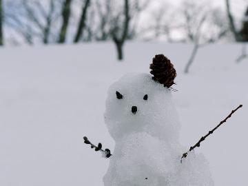 【リフト割引券付】マイアスキー場にGo!お得にスキー&スノーボード♪【1泊2食付】
