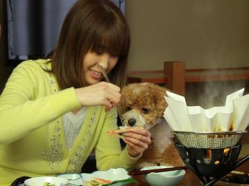 <GoToトラベルキャンペーン割引対象>【1日4組限定】日本海の獲れたて食材を喰らう!☆朝食も個室で☆