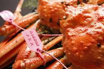 【かに大好き!】+ ゆで蟹の姿付きプラン
