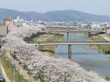 ★第36回ふくい桜まつり、お花見満喫!2食付プラン★