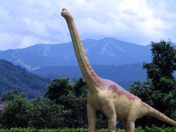 【HP限定価格】日本一の恐竜博物館観覧券付き、安心1泊2食付プラン