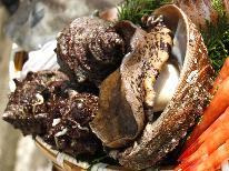 夏限定♪アワビ・サザエ・バイ貝の貝尽くしコース