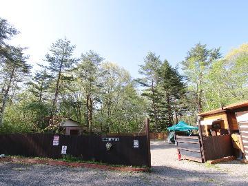 100坪のキャンプサイトでワンちゃんと大自然を感じよう♪