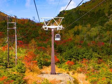【日光白根山ロープウェイ】特典付き☆大自然を楽しもう!標高2000mの天空の足湯で最高の休日を!