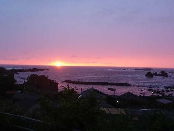 ◆使っ得!にいがた県民割キャンペーン対象◆日本海の幸を満喫♪こだわりの創作海鮮料理【1泊2食】