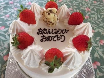 大切な記念日 & スイーツ好きさん♪集まれ~!心に残る素敵な時間を・・・可愛いホールケーキ付き プラン