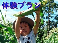 【野菜収穫体験】大地の恵みをいただく★夏の思い出づくりにも!≪1泊2食付き≫