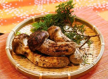 【秋の香~akinoka~】極上懐石で秋の味覚を様々な調理法で楽しむ…■松茸尽くしコース■
