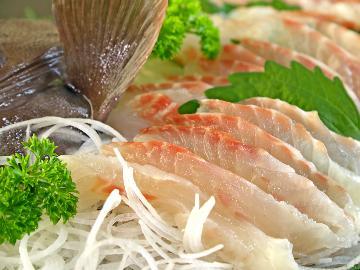 幻の高級魚≪若狭の新ブランド☆マハタ≫ボリューム満点マハタプラン