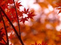 【秋の優雅旅】《昼食用弁当付》 戸隠森林植物園で野鳥☆自然観察&鏡池の紅葉が人気♪(1泊3食付)