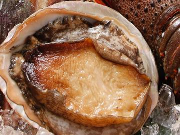 【篠島の恵みに舌鼓】鮮度が決め手の鮑のお造り★篠島の『食』を贅沢に♪≪1泊2食付≫