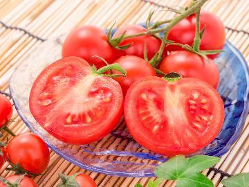 【夏季限定◇夏野菜のトマト鍋】栄養満点☆太陽の恵みいっぱいの夏野菜を使用した彩り鮮やかなトマト鍋♪