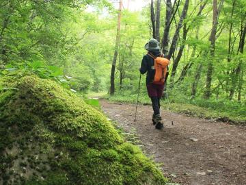 《おひとりさま歓迎♪》登山・温泉・森林浴・アウトドアで自分時間。自由気ままな一人旅プラン【1泊2食】