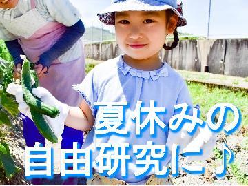 【夏休み体験学習☆子供料金半額】夏野菜の収穫や田舎の生活を体験し夏休みの自由研究にしよう♪