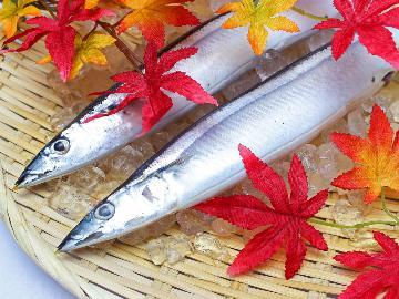 【秋季限定】ガストロノミーツーリズムinうのしまヴィラ~秋刀魚ごはん×茨城のこだわり食材~