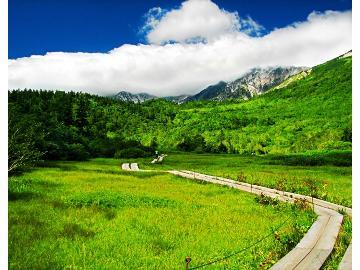 【トレッキング】白馬の大自然で深呼吸♪森林浴・山登り・散策などの方にオススメ~特典付きプラン